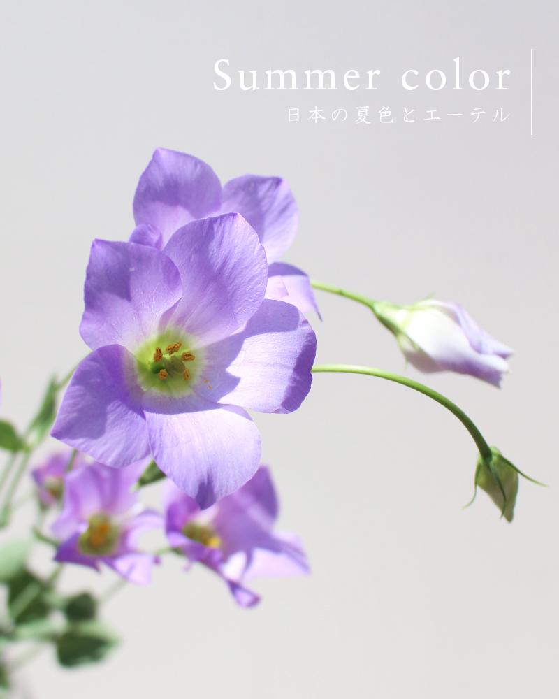 日本の夏色とエーテル